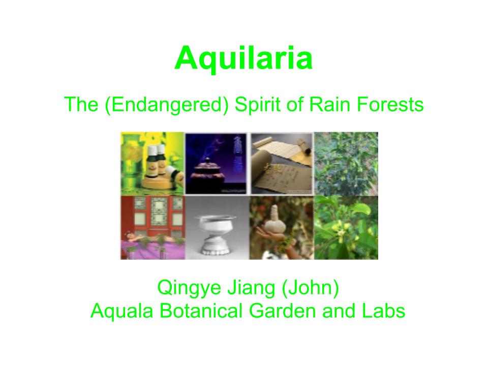Aquilaria-Introduction-1