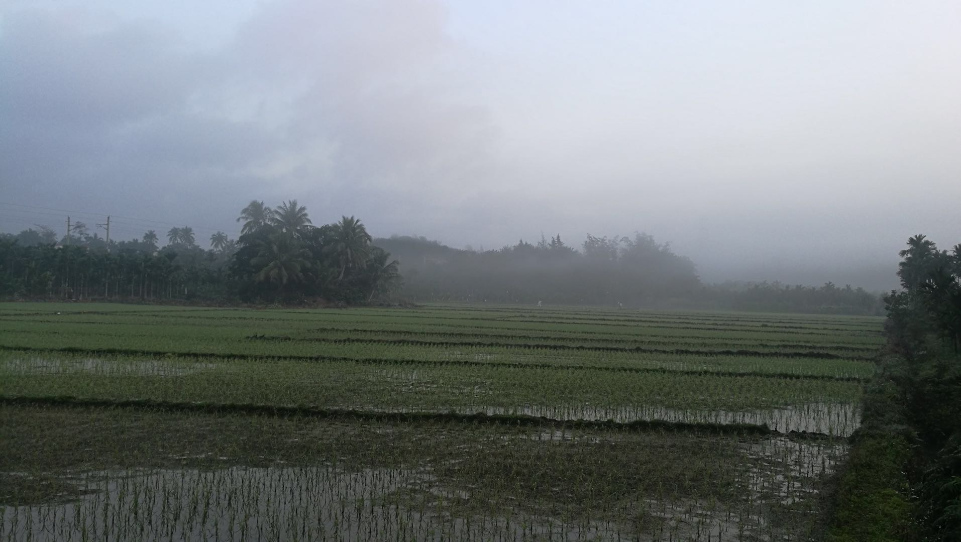 Chunyu